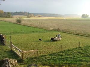 lotta-F-kurs-2010-norr-enby-okt (72)